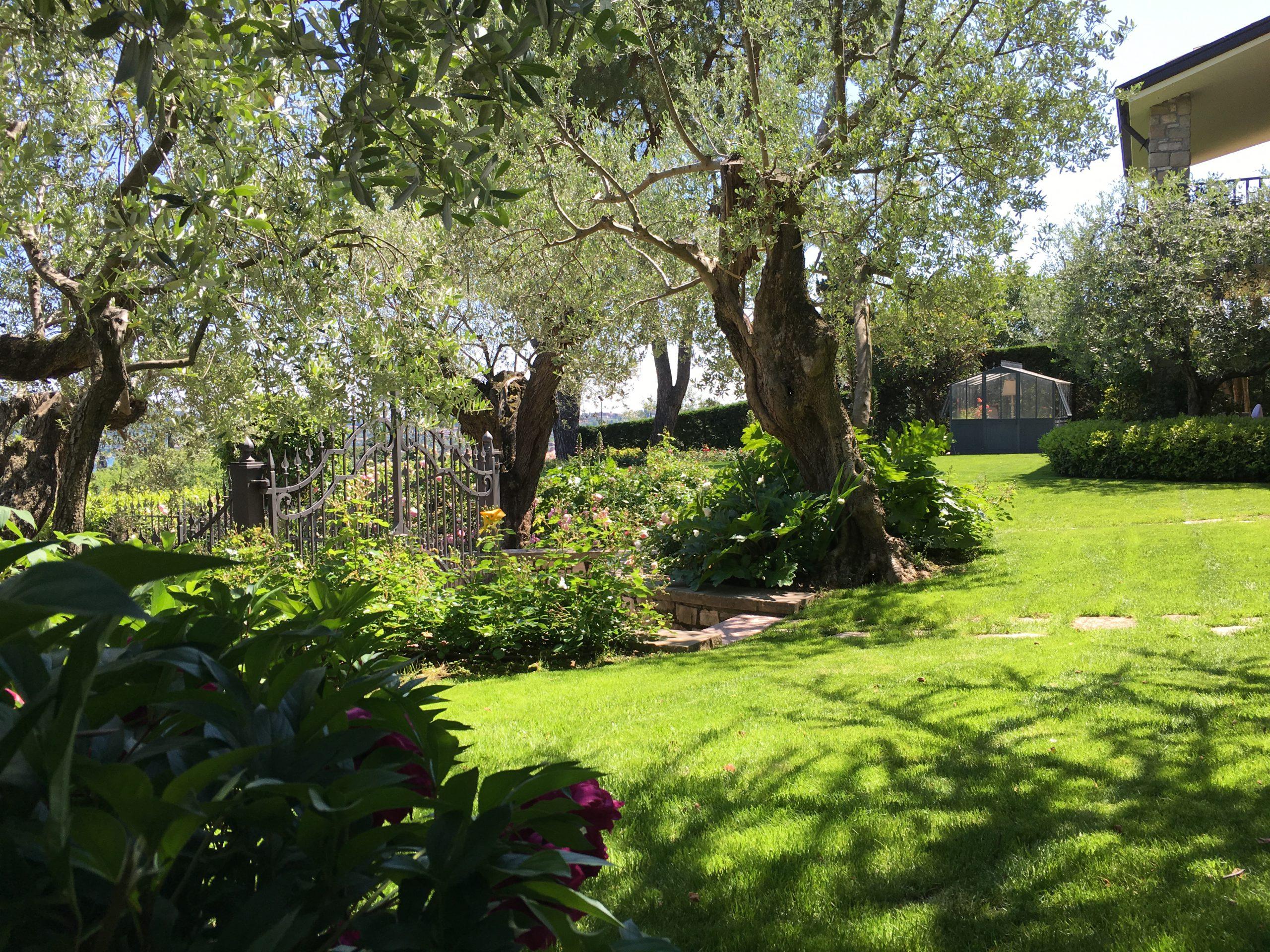 Realizzazione Terrazze e Giardini Verticali